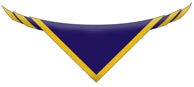 16th Bermondsey Scout Group Neckerchief (necker/scarf)