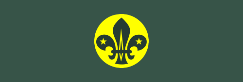Scout Chief Scouts Personal Award
