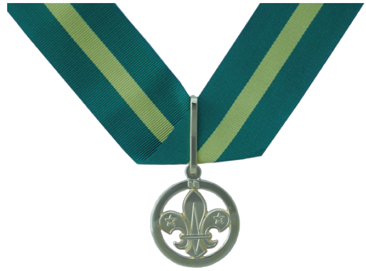 Scout Awards: The Bar to the Award for Merit