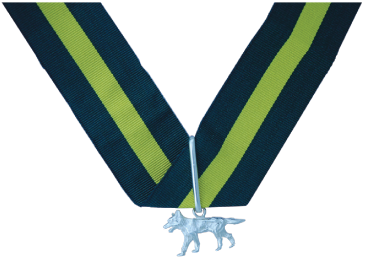 Scout Awards: The Silver Wolf