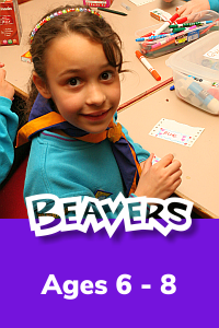 Find out about joining Beavers at 16th Bermondsey Scout Group